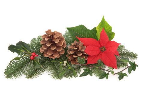 christmas flower decorations the design inspirationalist