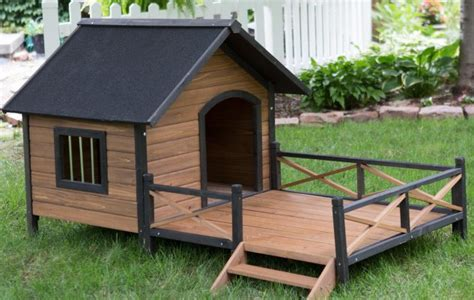 top 10 best house dogs top 10 of the coolest dog house designs