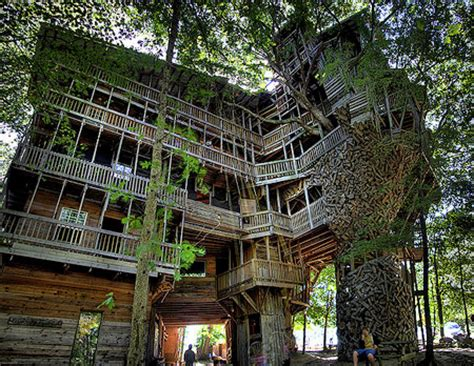 worlds largest house inside the world s largest tree house techeblog