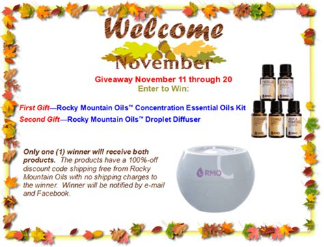 Appliance Giveaway 2017 - welcome november giveaway 2017 essential oil kit droplet diffuser
