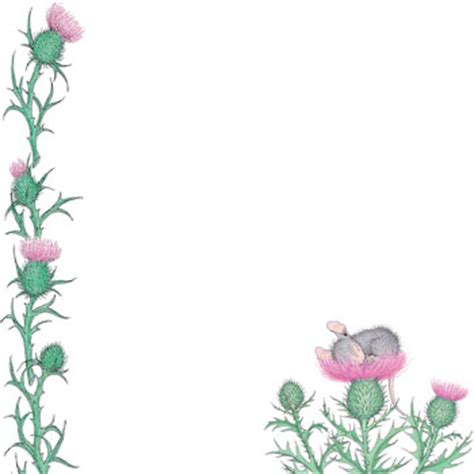 Simple Bathroom Designs Baby Mouse Asleep On Thistle Blinds Creatively Different