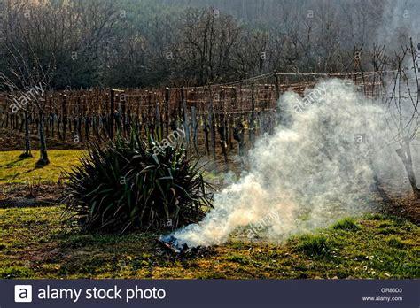 feuerstelle im freien rauchende feuerstelle im freien stockfoto bild 117579983