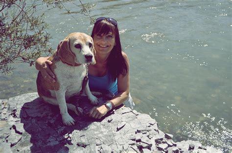 alternativno zdravljenje reiki za zivali pse