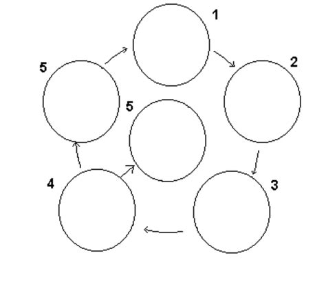 interphase coloring pages