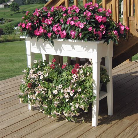 Raised Flower Planters by Raised Planter In White Resin Great For Herbs Vegetables