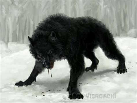 lone wolf  anger awesome creepy art  picrures