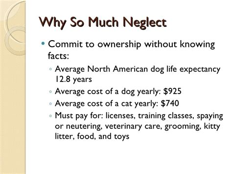 8 Crimes We Commit Without Knowing by Animal Abuse Powerpoint 2