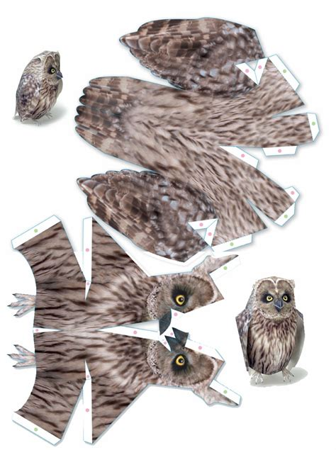 Papercraft Bird - screech owl po archives
