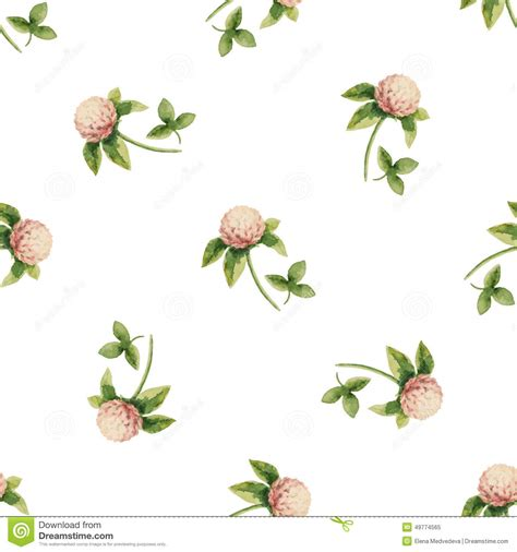clover flowers stock vector image 49774565