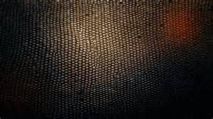 snake skin wallpaper 11666