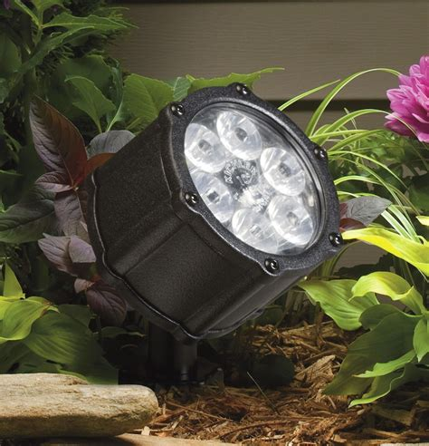 Outdoor Plant Lights Plant Soup Inc 187 Led Lighting