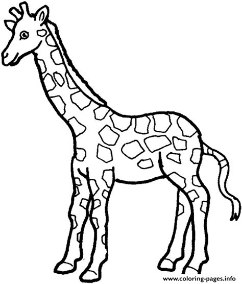 coloring pages zoo animals preschool giraffe preschool s zoo animals14cd coloring pages printable