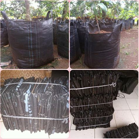 Harga Planter Bag by Jual Planter Bag Ke Kediri Hub 0811 2631 304 Karung Modern