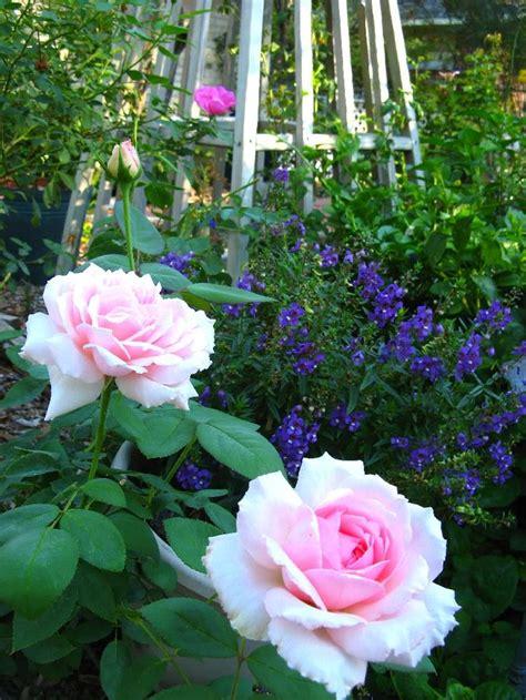 flowers funeral home ga thin