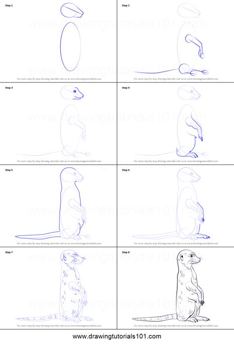 how to make doodle step by step how to draw a meerkat printable step by step drawing sheet