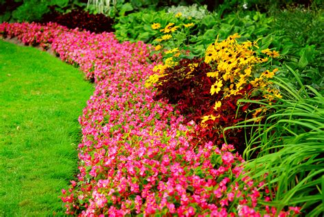 Flower Gardens Ideas Easy Flower Garden Ideas Photograph Easy Steps To A New Ga