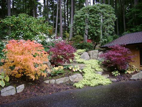 northwest backyard landscaping ideas pacific northwest landscaping