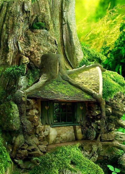 exquisite house built under tree roots louise hamlin wright pinte