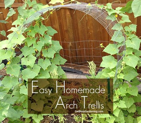 easy homemade arch trellis gardens raised beds  homemade