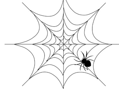 drawing web page draw a web for the spider coloring pages