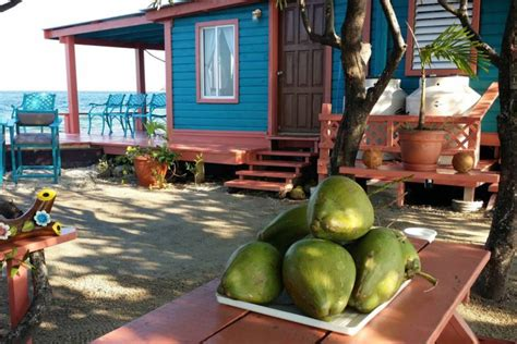 bird island belize airbnb airbnb will let you rent your own off the grid caribbean