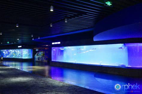 aquarium design international ltd one of the largest public aquarium projects in the world