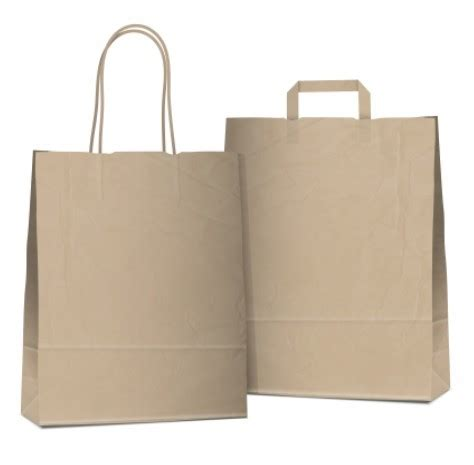 free elegant vector paper shopping bag design template 04