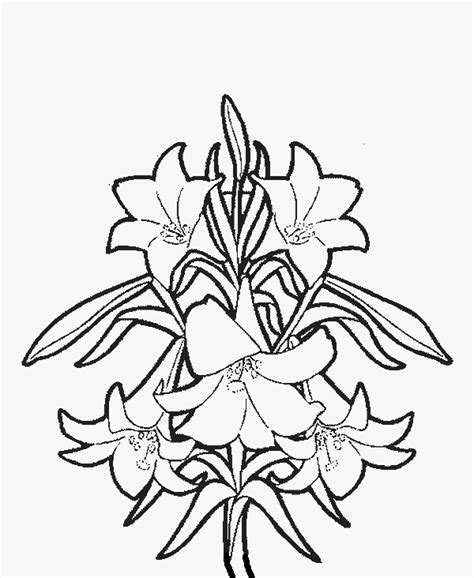 free coloring pages of easter flowers easter coloring pages easter coloring pages