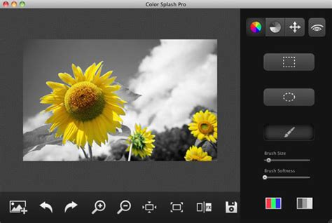 photo color app make a black and white photo color app coloring pages