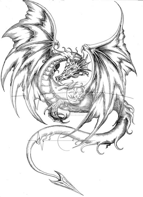 free dragon tattoo designs to print drawings coloring pages