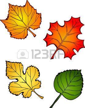 imagenes de hojas otoñales dibujos de hojas de oto 241 o cuatro hojas de oto 241 o hojas