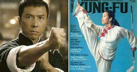 film mandarin kungfu master actor and martial artist donnie yen s kungfu master is