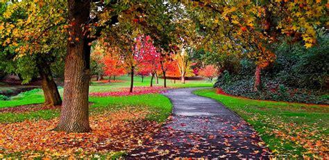 amazoncom autumn scenery  wallpaper appstore