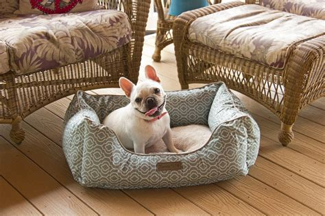 medium sized dog beds top 5 best dog beds for small medium size dogs petpa