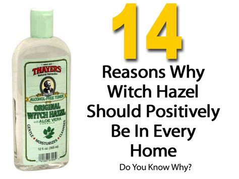 14 reasons you need amazing witch hazel facial toner make up remover and so much more