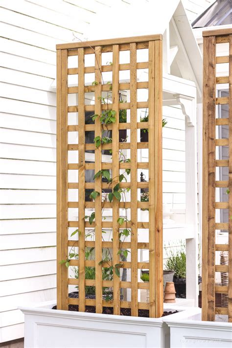how to build a trellis diy trellis planter love grows wild