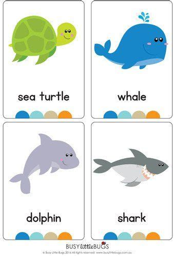 printable ocean animal cards 17 best images about flash cards on pinterest earth day