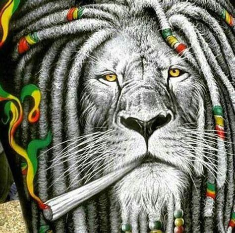 imagenes de leones rastafari les 25 meilleures id 233 es de la cat 233 gorie rasta lion sur