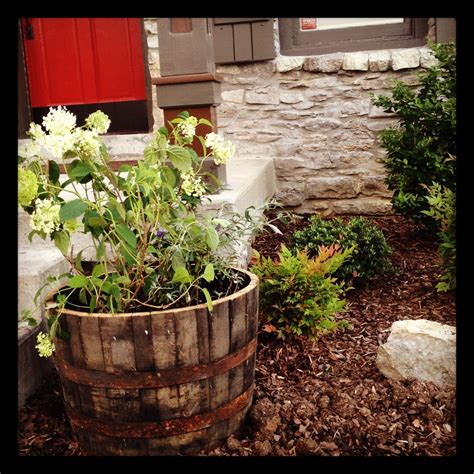 Half Whiskey Barrel Planter by How To Prepare Half Whiskey Wine Barrel Planter Our