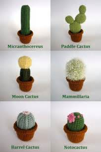realistic crocheted cacti and succulents by lunascrafts on