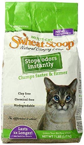 theme names for litter of kittens swheat scoop multi cat litter cat my love