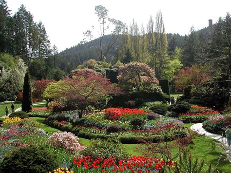 Gardens Canada by The Butchart Gardens Vancouver Island Columbia