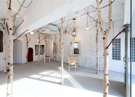 naturalistic hair salons birch trees and antiques create a fairytale woodland in