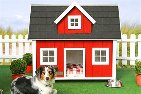 most expensive dog house in the world the most expensive dog mansions in the world paperblog