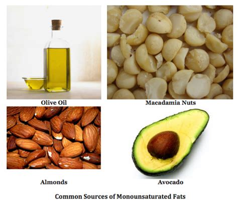 definition of healthy fats unsaturated fats definition sources exles study