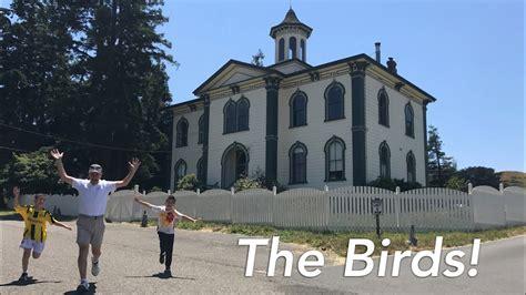 roadtrip usa vlog the birds filming locations in bodega
