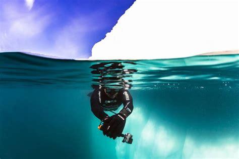 antarctica allways dive