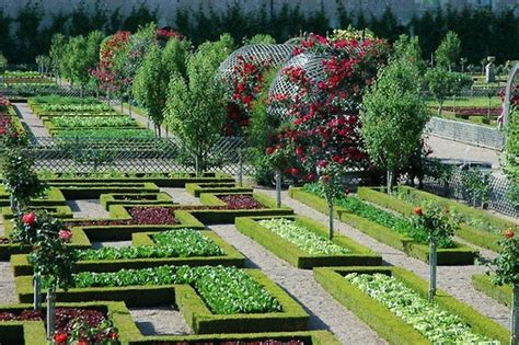 Potager Garden Design Ideas Plans Layout And Tips For Fruit Tree Garden Layout
