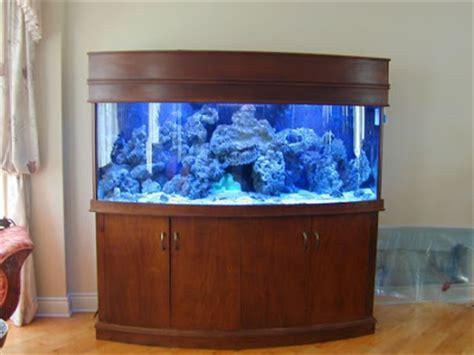 beautiful home fish tanks 50 beautiful fish aquarium designs kerala home design