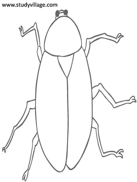 how to your coloring insects printable coloring page for 25